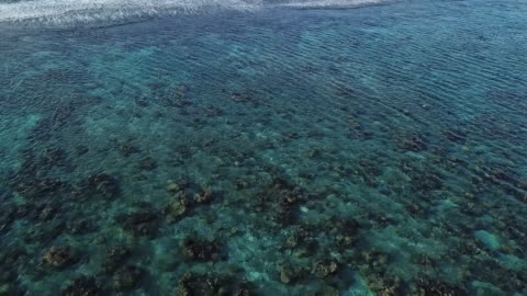 aerial drone view of sea with waves and barrier reef in french polynesia - french polynesia stock videos & royalty-free footage
