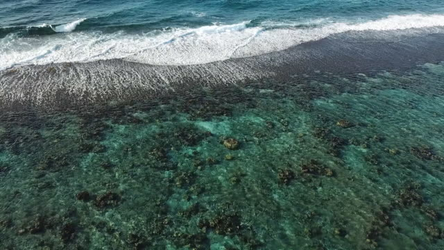 aerial drone view of sea with waves and barrier reef in french polynesia - moorea stock videos & royalty-free footage