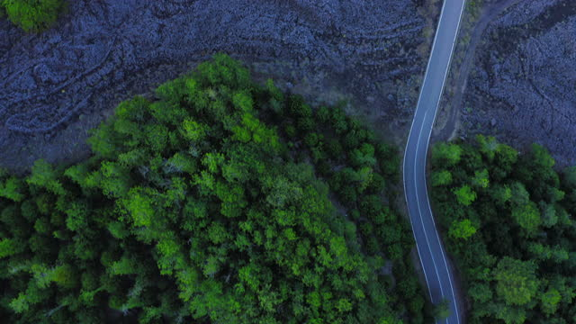 aerial drone view of the vulcano etna in sicily, the lava stone of the last eruption and roads passing through v.5 - road stock videos & royalty-free footage