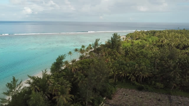 aerial drone view of trees and scenic tropical islands in french polynesia. - フランス領ポリネシア点の映像素材/bロール