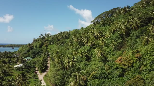 aerial drone view of tropical forest and fields and sea, lagoon - huahine island stock videos and b-roll footage
