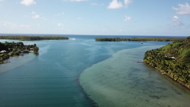 vidéos et rushes de aerial drone view of tropical forest and fields and sea, lagoon - dom tom