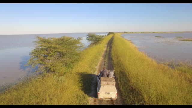 aerial drone view of two men sitting on top of a pickup truck driving on a dirt road in africa taking pictures on a safari. - photographer stock videos & royalty-free footage