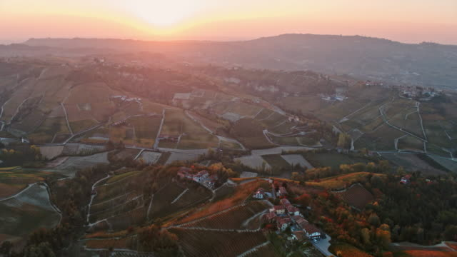 Aerial drone view of vineyards at sunset, Langhe, Piedmont, Italy