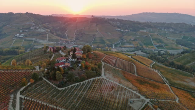 aerial drone view of vineyards at sunset, langhe, piedmont, italy - piedmont italy stock videos & royalty-free footage