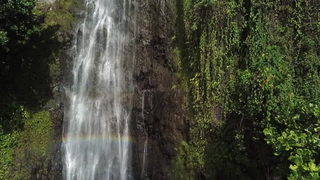 vídeos de stock e filmes b-roll de aerial drone view of  waterfall in the middle of a tropical forest - territórios ultramarinos franceses