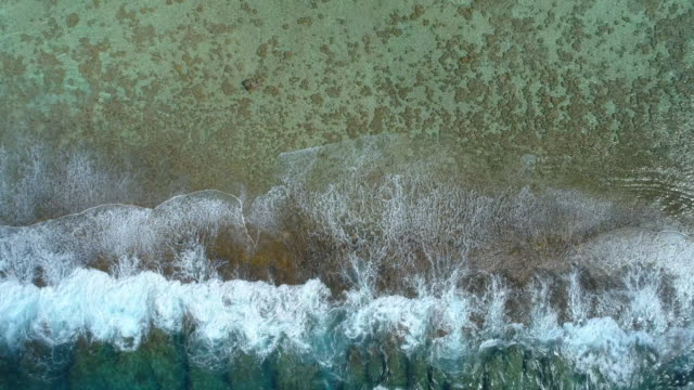 aerial drone view of waves breaking on a coral reef in bora bora tropical island. - bora bora aerial stock videos and b-roll footage