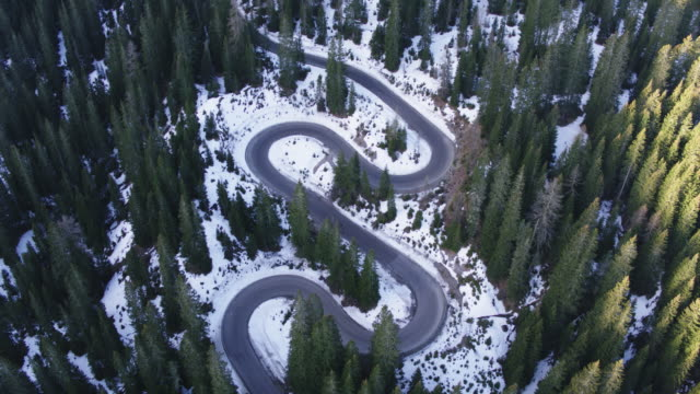 aerial drone view of winding road through forest in winter - empty road stock videos and b-roll footage