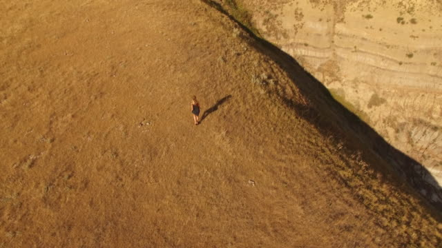 aerial drone view of woman walking through field - long hair stock videos & royalty-free footage
