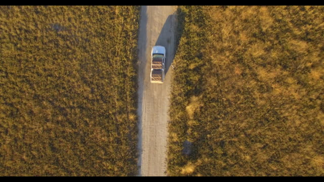 aerial drone view straight down, driving a pickup truck on a dirt road bush brush in africa during a safari. - time-lapse - individuality stock videos & royalty-free footage