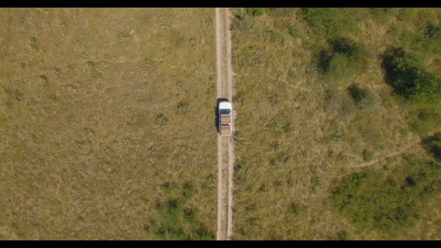 aerial drone view straight down, driving a pickup truck on a dirt road bush brush in africa during a safari. - dirt track stock videos & royalty-free footage