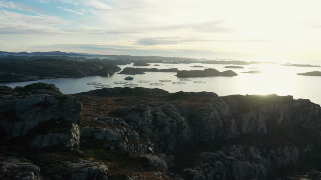 aerial drone view: the sea and fjords of norway - salmon stock videos & royalty-free footage