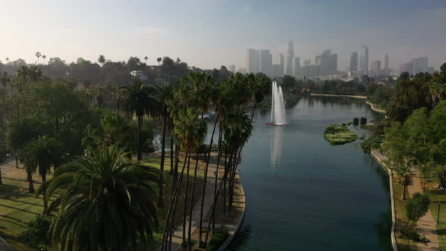 aerial: echo lake and palm trees on beautiful sunny day in downtown la - los angeles, california - sunny video stock e b–roll