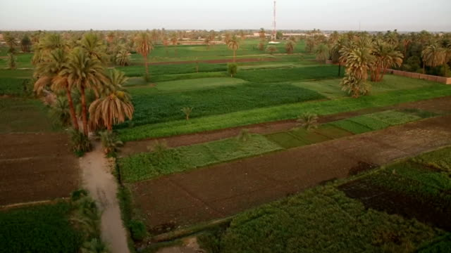 aerial egypt - luxor thebes stock videos and b-roll footage