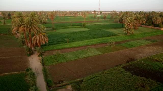 Aerial Egypt