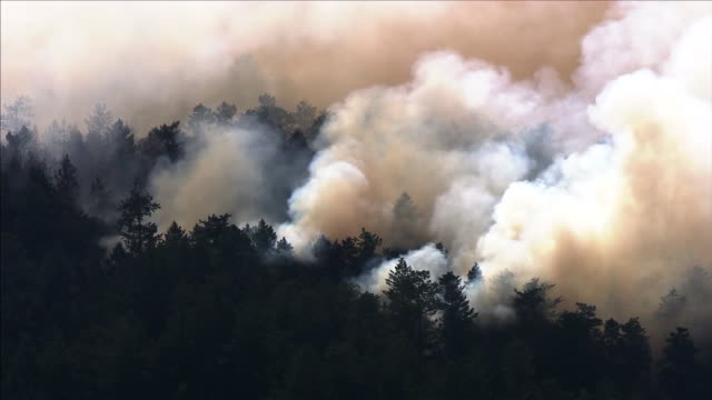 aerial establishing shot of a wildfire burning in santa cruz county, california. - environment or natural disaster or climate change or earthquake or hurricane or extreme weather or oil spill or volcano or tornado or flooding stock videos & royalty-free footage
