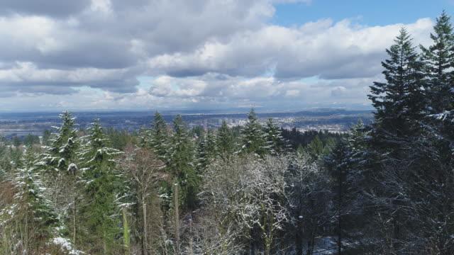航空写真: ポートランド、オレゴンのショットを確立します。 - hill点の映像素材/bロール