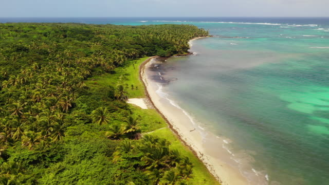 aerial exit: forest covered island by ocean on sunny, cloudy day - little corn island, nicaragua - sunny video stock e b–roll