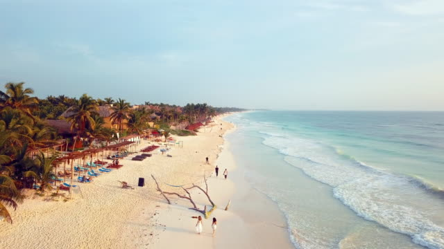 aerial: exploring the beach coast of tulum mexico - idyllic video stock e b–roll