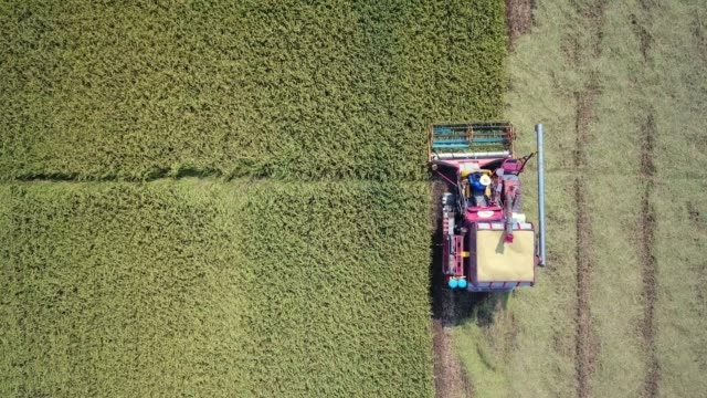 aerial farmers harvesting by machine - harvesting stock videos and b-roll footage