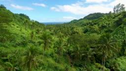 Aerial - Fiji Jungle Waterfall Hike