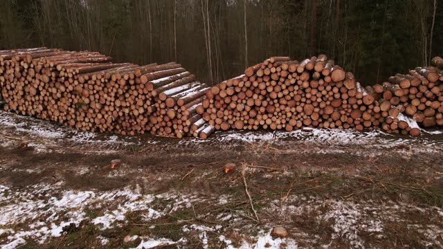 aerial flight revealing stacked pile of log or lumber ready for harvesting in forest - destruction stock videos & royalty-free footage