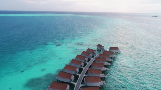 aerial flying drone view of maldives white sandy beach on sunny tropical paradise island - palapa stock videos & royalty-free footage