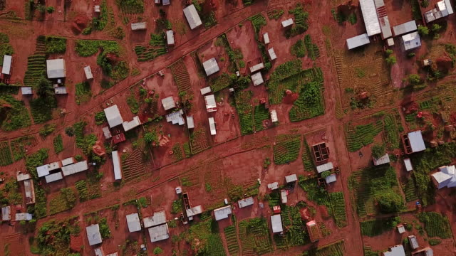 aerial flying looking directly down on rural area, congo, in africa - 場所点の映像素材/bロール