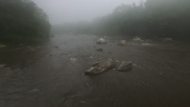 aerial flying low over foggy river in summer - new paltz stock videos and b-roll footage
