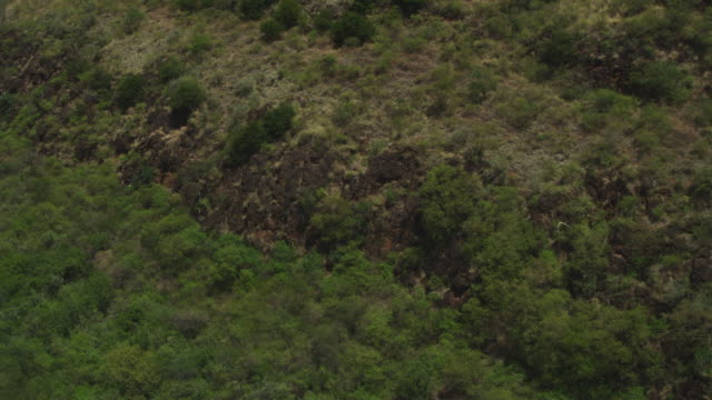 Aerial WS flying over African bush then banking to fly along Rift Valley escarpment