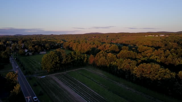aerial flying over countryside and country road at sunset - ニューパルツ点の映像素材/bロール