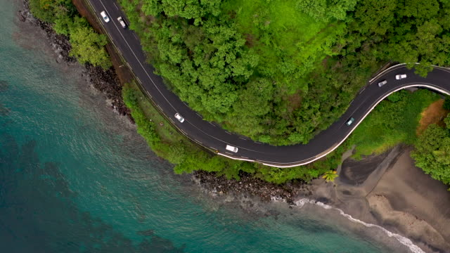 aerial flying over looking directly down on road outside caribbean town of saint-pierre in martinique, daytime - tropical tree stock videos & royalty-free footage