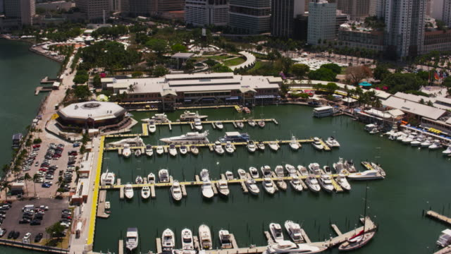 aerial flying over miami marina with boats sunny day miami fl - jachthafen stock-videos und b-roll-filmmaterial