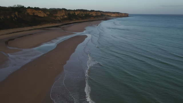 aerial flying over omaha beach full of seagull in france at sunrise - normandy stock videos & royalty-free footage