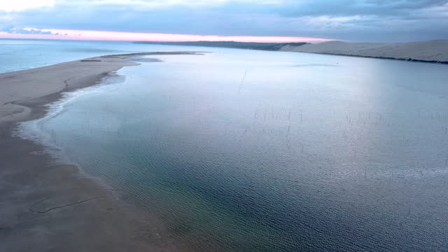 aerial flying over the sand banc d'arguin in front of the dune of pilat at sunrise - arcachon stock videos & royalty-free footage