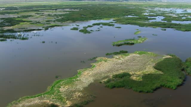 vídeos de stock, filmes e b-roll de aerial flying over wetlands in oregon - pântano salgado