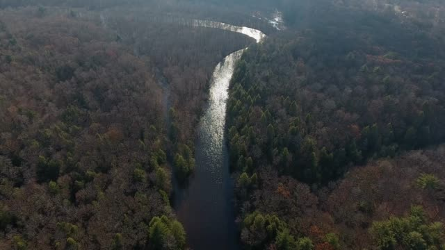 aerial flyover of wild river in early spring - freshwater stock videos & royalty-free footage