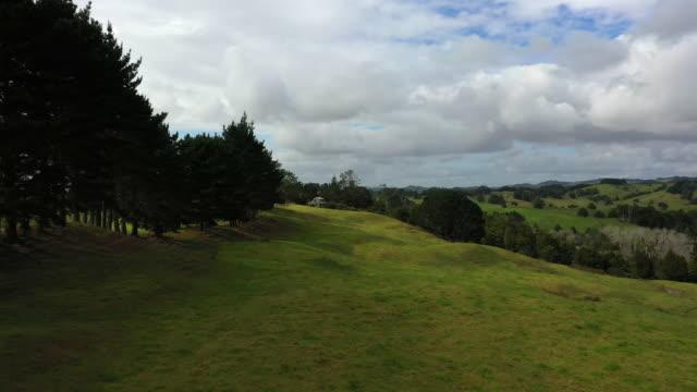 aerial flyover view approaching distant house in green rolling landscape / towai, new zealand - saftig bildbanksvideor och videomaterial från bakom kulisserna