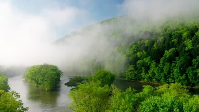 vidéos et rushes de aerial flyover view of fog over river in forest approaching hill / susquehanna, pennsylvania, united states - végétation verdoyante
