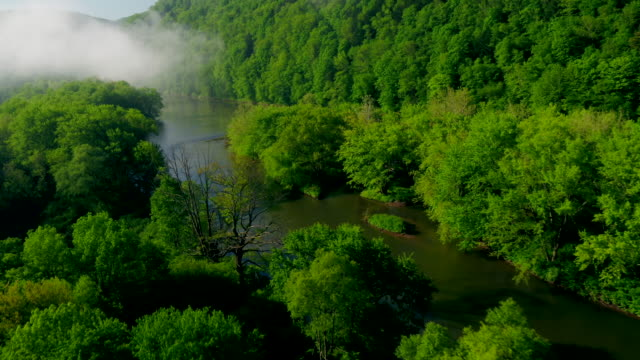 aerial flyover view of islands in river near forest approaching fog / susquehanna, pennsylvania, united states - lush video stock e b–roll