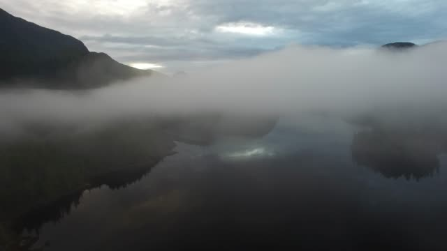 aerial: fog covering forest and lake reflecting cloudy sky - thick stock videos & royalty-free footage