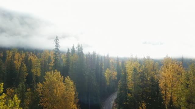 stockvideo's en b-roll-footage met luchtmist over bergenwaaier - condensatie