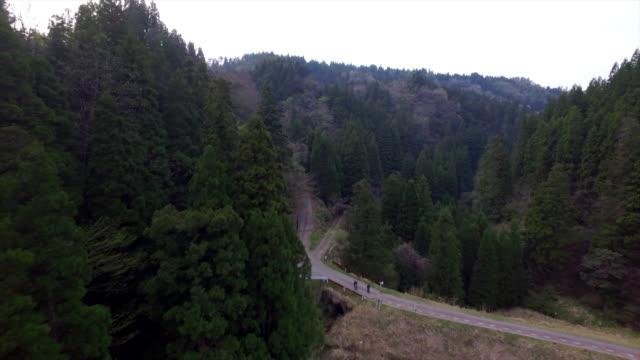aerial footage at toyama city forest, toyama, japan - satoyama scenery stock videos & royalty-free footage