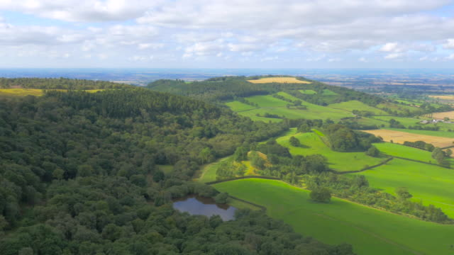 aerial footage from drone flying over yorkshire moors, uk - heather hunter stock videos & royalty-free footage