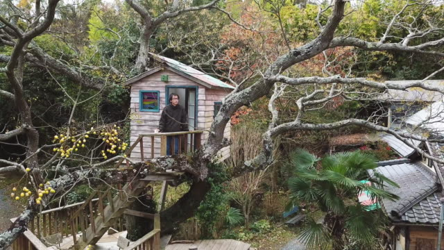 aerial footage of a man in a tree house drinking coffee and enjoying the view - treehouse stock videos & royalty-free footage