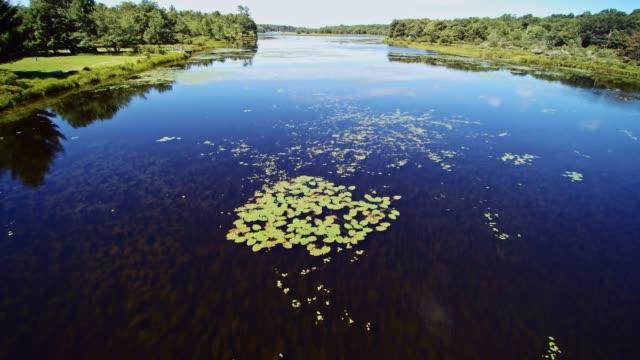 aerial footage av sjön ytan med vatten lilyes - poconobergen bildbanksvideor och videomaterial från bakom kulisserna