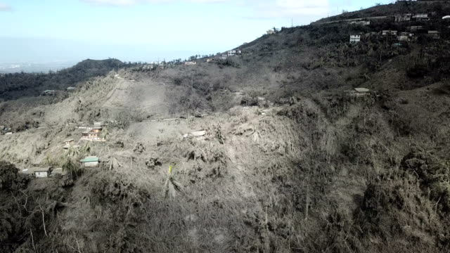 aerial footage of thick volcanic ash deposits after major eruption at taal volcano - palm tree stock videos & royalty-free footage