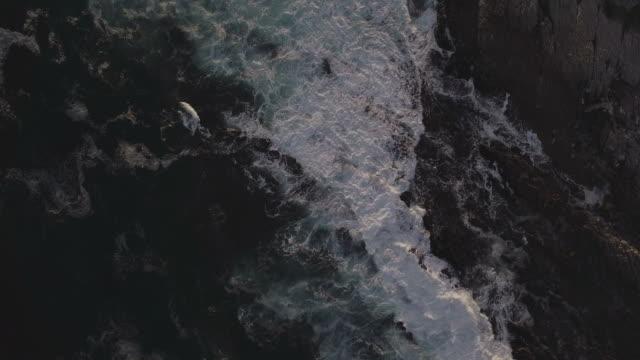 夕暮れの海岸線を急いで波の空中映像