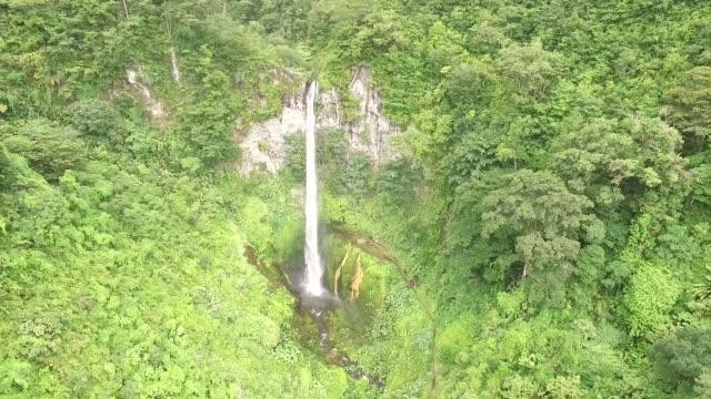 luftaufnahmen regenwald wasserfall - chiapas stock-videos und b-roll-filmmaterial