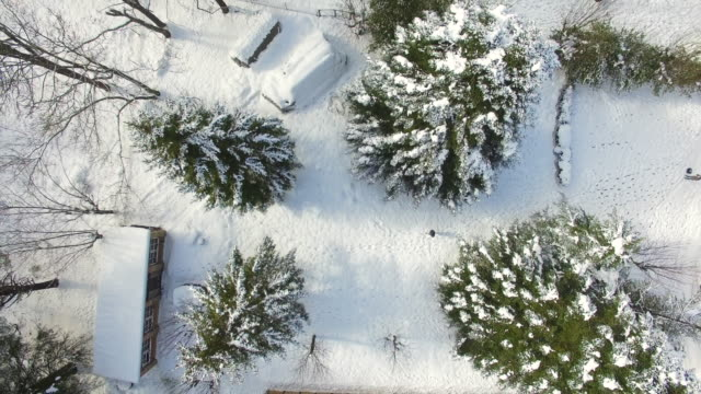 Aerial footage recorded with drone flying between the snowy trees in the Montseny nature reserve during winter with guy walking in the snow.